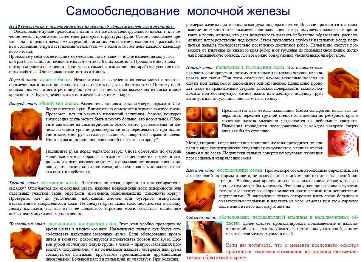 Обследование грудных желез в домашних условиях фото пошагово